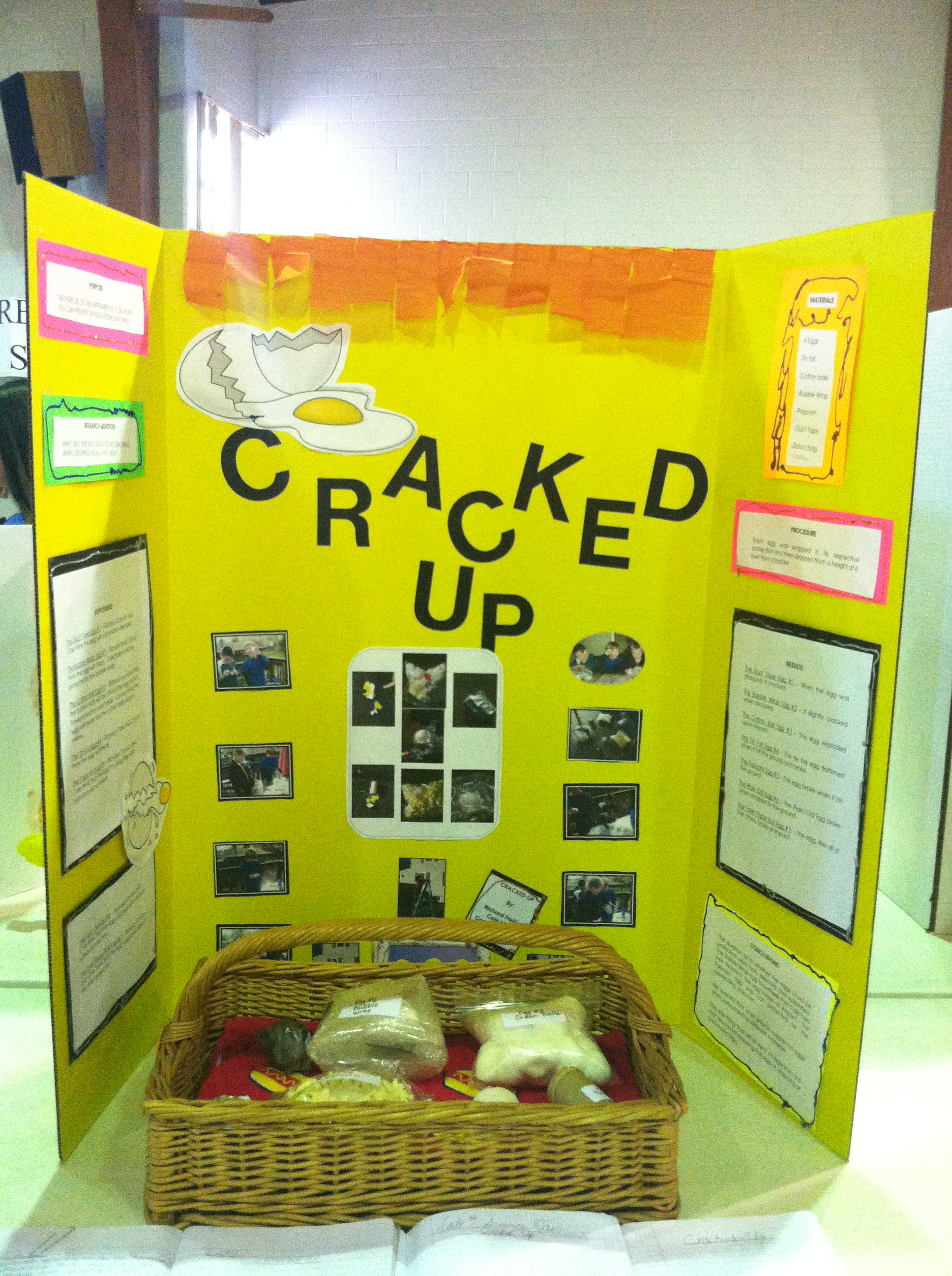 science project topics Science fair projects for all levels we have hundreds of ideas for every science topic, from for example, if you would like to do science projects involving electricity, type electricity in the box and.